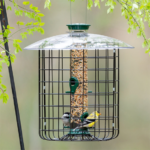 The Backyard Naturalist stocks Droll Yankees SDC Sunflower Dome Cage Feeder .