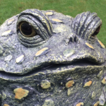 The Backyard Naturalist has Toad Hollow's garden statuary Toads, very detailed and hand painted with uv-resistant paint and finishes.