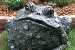 Toads of Toad Hollow