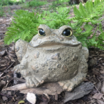 The Backyard Naturalist has Toad Hollow's garden statuary Toads, in Natural finishes and Dark Natural.