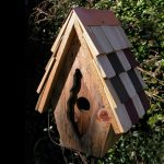 The Backyard Naturalist stocks biologically species correct bird houses for Wrens in a variety of styles.