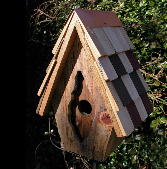 Wild bird houses the backyard naturalist for Different types of birdhouses