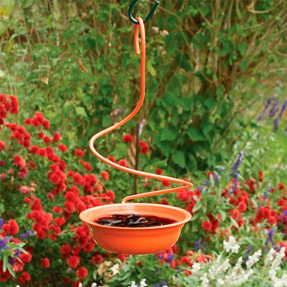 The Backyard Naturalist store in Olney, Maryland has Baltimore Oriole Feeders in many different designs, including this Spiral Hanger Metal Feeder holds jelly, mealworms, fruit .