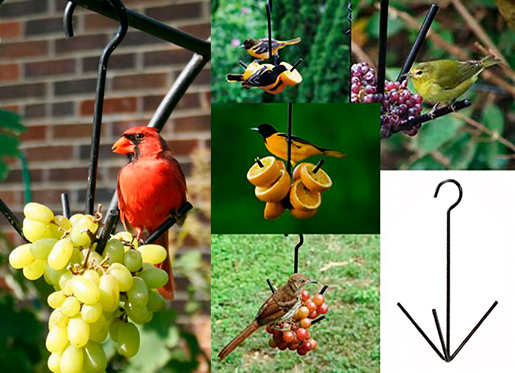 The Backyard Naturalist says this is as simple as it gets! Three Prong Hanging Metal Fruit Feeder for Orioles, Robins, Catbirds and other fruit lovers.