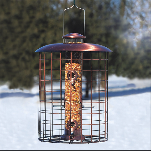 The Backyard Naturalist stocks Woodlink's Copper Cage 6 Port Seed Feeder.