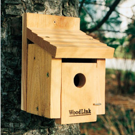 Wild bird houses the backyard naturalist for Types of birdhouses for birds