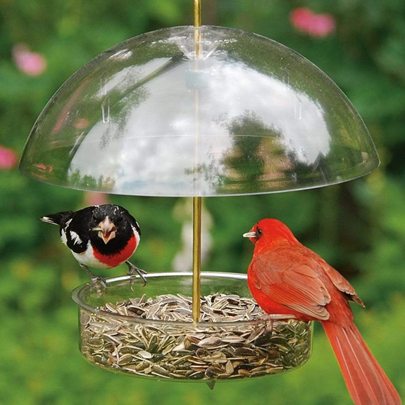 The Backyard Naturalist's Droll Yankees X-1 Seed Saver feeder with adjustable dome.