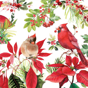 The Backyard Naturalist has Michel Design Works 2019 Holiday Collection, 'Poinsettia'.