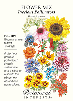 The Backyard Naturalist stocks Botanical Interests'Precious Pollinators mix provides food and nectar to a wide range of pollinators, including insects, butterflies, and moths.