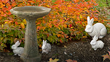 See our bird baths and more in our annex.