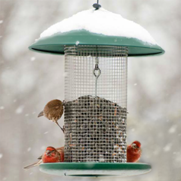 The Backyard Naturalist sells Woodlink's Green Steel Magnum Sunflower Feeder, as well as other mesh screen type feeders.