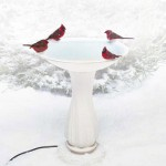 Classic design heated bird bath attracts a crowd of cardinals in winter.